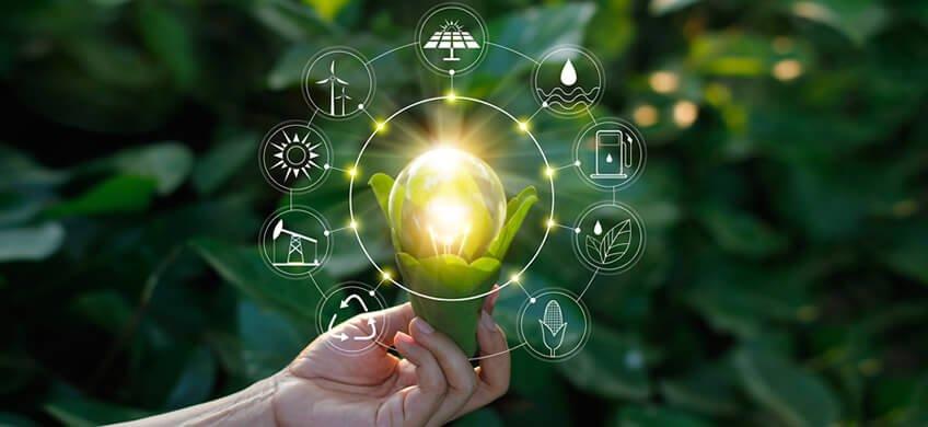 Comunicación del desempeño ambiental y energético 2019